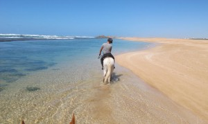 horse_riding_in_oualidia_coast_morocco12_0